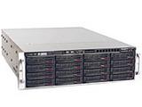 Сервер хранения данных STSS Flagman S1316.2